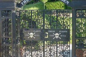 Bên trong 'khu vườn chết chóc' lớn nhất thế giới