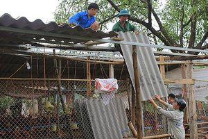 Dông lốc, mưa đá gây thiệt hại tại nhiều địa phương