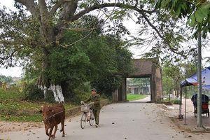 Rong ruổi làng cổ Đường Lâm