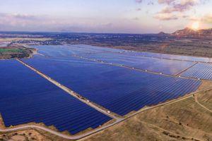 Điện mặt trời: Sắp có thêm dự án lớn phát điện