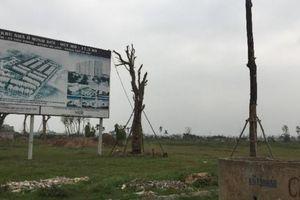 'Điểm danh' những dự án bỏ hoang hàng trăm héc ta đất ở Mê Linh
