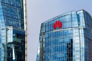 Cuộc vươn mình không dễ dàng của 'người khổng lồ' Huawei