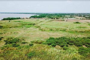 KCN Phước Đông bị bỏ hoang 12 năm vì doanh nghiệp không bàn giao đất