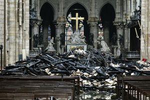 Toàn lực phục hồi nhà thờ Đức Bà Paris