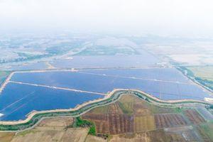 Bước đi sáng suốt trong đầu tư lĩnh vực năng lượng tái tạo tại Việt Nam