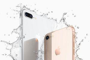 Apple ra mắt bản nâng cấp của iPhone 8 vào năm 2020