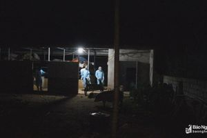 Nghệ An: Thêm 1 địa phương xuất hiện dịch tả lợn châu Phi