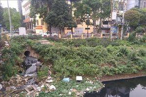 Nguy cơ ô nhiễm nghiêm trọng nguồn nước phục vụ nông nghiệp tại Hà Nội