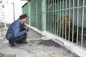 Kì lạ con gấu phải ngồi tù chung thân vì phạm tội