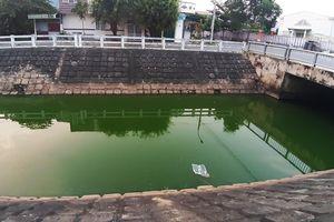 Nước kênh ở Đà Nẵng đổi màu xanh, xuất hiện nhiều cá chết