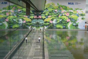 Tranh hoa sen giành Huy chương Vàng thiết kế quốc tế
