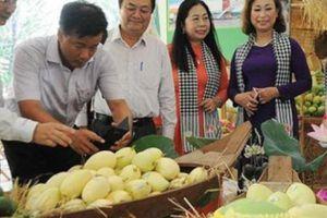 Người Mỹ háo hức chờ đón thưởng thức xoài tươi từ Việt Nam