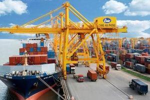 Hàng loạt các hãng tàu lớn liên tiếp mở tuyến dịch vụ cảng biển