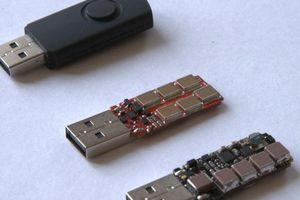 Dùng USB 'sát thủ' phá hoại 66 máy tính trường, thạc sĩ có thể nhận án tù