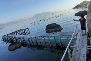 Giang hồ vô cớ đập phá tan hoang cơ sở du lịch tại Khánh Hòa (Bài 2): Cần xử lý hình sự để tránh tiền lệ xấu