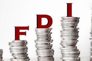 Mặt trái của FDI với các nền kinh tế
