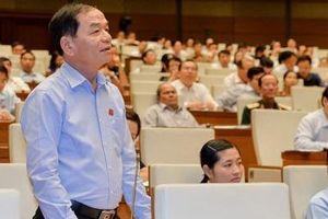 ĐBQH Lê Thanh Vân nói về vụ việc Jetstar thua lỗ, lãnh đạo vẫn được thăng chức
