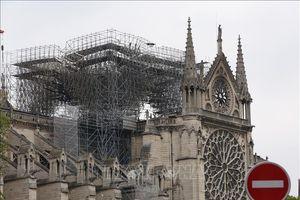 Báo giới châu Âu tranh cãi về ủng hộ phục dựng Nhà thờ Đức Bà Paris