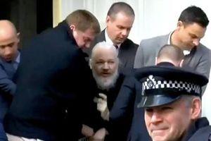 Vì sao ông chủ WikiLeaks bị bắt?