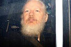 Thực hư bức ảnh là 'giọt nước tràn ly' định đoạt số phận nhà sáng lập WikiLeaks