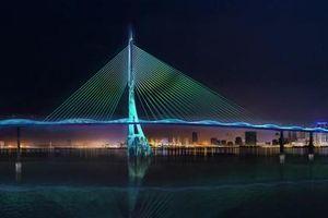 5.300 tỷ đồng xây dựng cầu Cần Giờ theo hình tượng cây đước