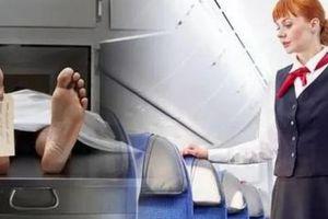 Ám ảnh với nữ tiếp viên hàng không: Người ngồi ghế hành khách là xác chết