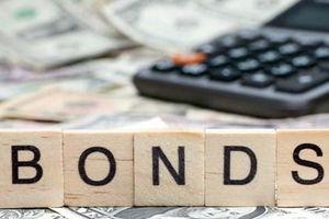 Điều kiện và những thay đổi về phát hành trái phiếu trong nước