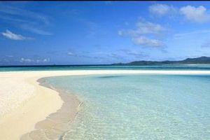 Mùa hè đi biển chú ý 5 tác nhân gây bệnh ẩn trong cát không thể bỏ qua