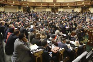 Ai Cập trưng cầu ý dân về sửa đổi Hiến pháp
