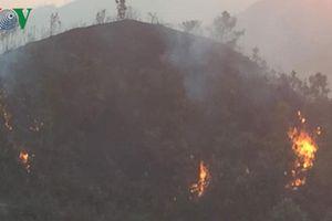 Nắng nóng gây cháy rừng tại Sơn La