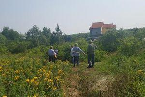 Quảng Bình: Xuất hiện tình trạng lấn chiếm đất rừng tràn lan