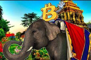 Giá tiền ảo hôm nay (21/4): Thái Lan 'mở rộng cửa' cho tiền ảo và các dịch vụ liên quan