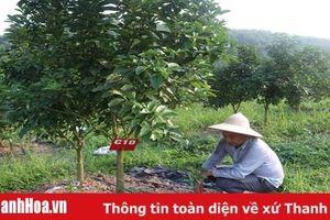 Ứng dụng khoa học - kỹ thuật trong sản xuất nông nghiệp ở các huyện miền núi