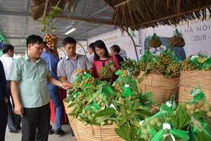 Cơ hội để Việt Nam thành 'cường quốc trái cây'