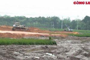 Cần làm rõ việc Công ty CP Đầu tư BĐS Toàn Cầu phá lúa non, thi công trên diện tích chưa được đền bù