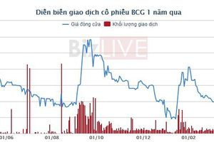 Vì sao Bamboo Capital lợi nhuận âm hơn 15 tỷ, cổ phiếu bị vào diện cảnh báo?