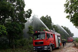 Công điện khẩn đề nghị tăng cường phòng cháy, chữa cháy rừng