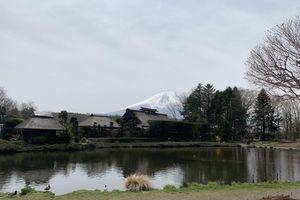 Vẻ đẹp núi Phú Sỹ Nhật Bản qua lời tự sự của Du khách