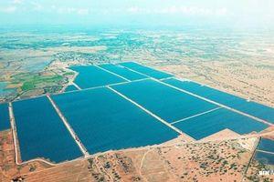 Vốn tư nhân đổ vào năng lượng tái tạo