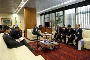 Brazil luôn coi Việt Nam là đối tác tin cậy