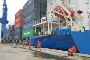 Khẩn trương gỡ vướng logistics cho ĐBSCL