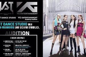 YG tuyển thực tập sinh ở Việt Nam - fan Kpop người hừng hực quyết tâm, kẻ chỉ xin một 'chân'... quét dọn