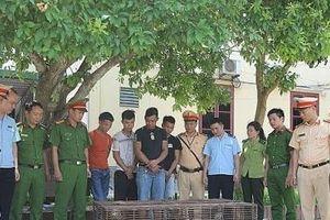 Hà Tĩnh: Bắt giữ xe chở tê tê, rùa và hơn 4 tạ gỗ quý trái phép