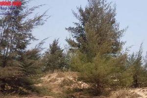Quảng Bình sắp có tổ hợp nghỉ dưỡng nghìn tỉ trên đất rừng phòng hộ?