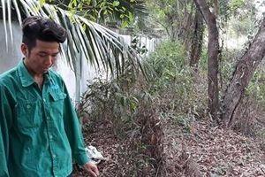 Phát hiện 300 xác thai nhi, nhà máy rác 'cầu cứu' vì không còn chỗ chôn