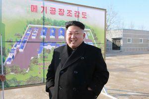 Được mời món đặc sản khi vừa tới Nga, ông Kim Jong-un từ chối không ăn