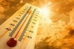 Nhiệt độ trung bình mùa hè năm nay có xu hướng cao hơn trung bình nhiều năm