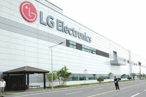 Mảng điện thoại thua lỗ, LG chuyển nhà máy sang Việt Nam nhằm cắt giảm chi phí