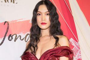Hoa hậu Thùy Dung tái xuất sau thời gian định cư tại Mỹ