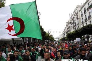 Tổng cục Du lịch khuyến cáo về tour đến Algeria và Sri Lanka